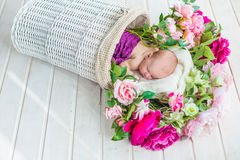 Adorable cute sweet sleeping baby girl in white basket with flowers on wooden floor Royalty Free Stock Photos