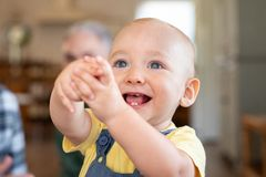 Adorable cute toddler laughing royalty free stock images