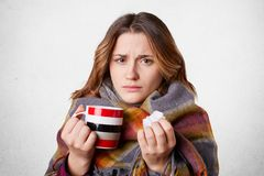 Adorable displeased female feels sick, drinks hot tea with raspberry, holds handkerchief as has runninng nose, wrapped in plaid, i Royalty Free Stock Photos