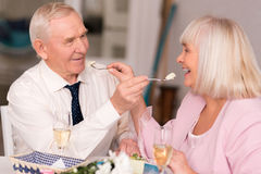 Adorable elderly couple being cute Stock Photography