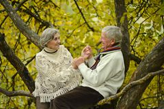 Adorable elderly couple went in the park royalty free stock photo