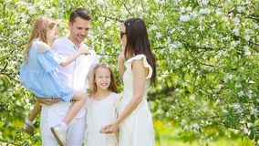 Family of four in blooming garden on beautiful spring day stock video