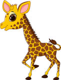 Adorable giraffe character  on white background Royalty Free Stock Image