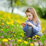 Adorable girl in blooming dandelion flowers Stock Photography