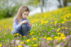 Adorable girl in blooming dandelion flowers Royalty Free Stock Image