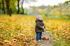 Adorable girl crying on beautiful autumn day Royalty Free Stock Images