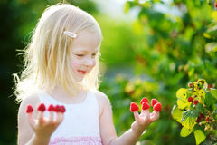 Adorable girl eating raspberries off her fingers Royalty Free Stock Photography