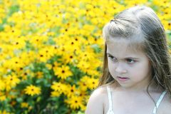 Adorable girl in flower field Royalty Free Stock Image