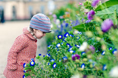 Adorable girl with flowers. An adorable girl smells flowers Royalty Free Stock Photo
