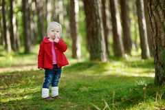 Adorable girl hiking in the forest on autumn day Stock Photography