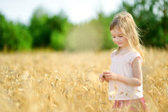 Free Adorable Girl In Wheat Field On Warm Summer Day Stock Photography - 43811962