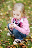 Adorable girl outdoors on an autumn day Royalty Free Stock Images