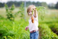 Adorable girl picking carrots in a garden Stock Photos