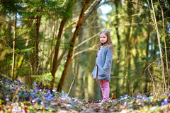 Adorable girl picking the first flowers of spring Royalty Free Stock Images
