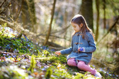 Adorable girl picking the first flowers of spring Stock Photography