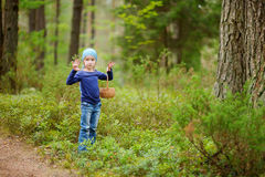 Adorable girl picking foxberries in the forest Royalty Free Stock Photos
