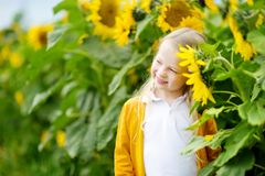 Adorable girl playing in blooming sunflower field on beautiful summer day. Royalty Free Stock Image