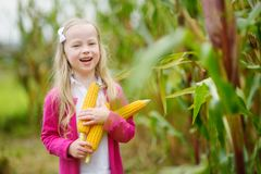 Adorable girl playing in a corn field on beautiful autumn day. Pretty child holding a cob of corn. Harvesting with kids Stock Images