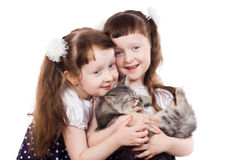 Adorable girl twins with a cat Stock Photo