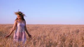 Girl walking on golden wheat field, slow motion stock footage