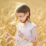 Adorable girl walking happily in wheat field Stock Image