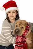 Adorable girl wearing a santa hat with a Shar Pei dog Royalty Free Stock Images