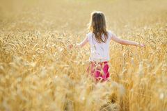 Adorable girl in wheat field on warm summer day Royalty Free Stock Image