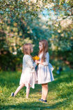 Adorable girls in blooming apple garden on sunny spring day Royalty Free Stock Image