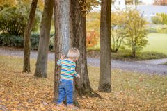 Adorable happ child, with blond hair peeking around the tree playing hide and seek in a park stock images