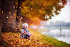 Adorable happy baby girl catching the fallen leaves, playing in the autumn park Stock Photos