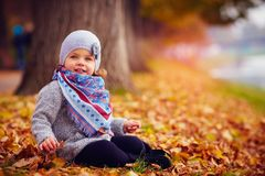 Adorable happy baby girl sitting in fallen leaves in autumn park Royalty Free Stock Image