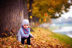 Adorable happy baby girl sitting in fallen leaves in autumn park Stock Photography