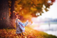 Adorable happy baby girl throwing the fallen leaves up, playing in the autumn park Royalty Free Stock Image