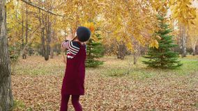 Adorable happy child throwing bunch of yellow leaves in park stock video
