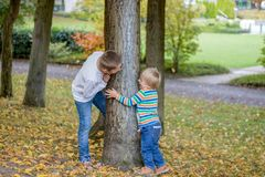 Adorable happy childs, with blond hair peeking around the tree playing hide and seek in a park royalty free stock photos
