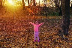 Adorable happy girl playing with fallen leaves in autumn park at sunset light. stock photography