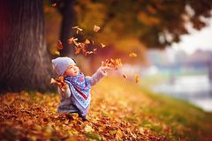 Adorable happy girl throwing the fallen leaves up, playing in the autumn park Royalty Free Stock Images