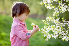 Adorable happy kid outdoors on spring day Royalty Free Stock Photography