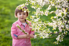 Adorable happy kid outdoors on spring day Stock Images