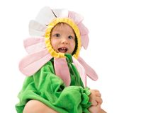 Adorable сhild girl,dressed in flower costume isolated on white background. The concept of childhood and holiday Stock Image