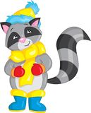 Adorable illustration of a cute little raccoon, dressed for winter, in color, for children`s book stock illustration