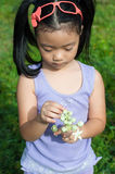Adorable kid girl interesting in nature. Royalty Free Stock Photography
