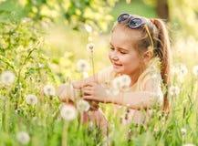 Pretty little girl gathering white dandelions royalty free stock photo