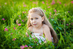 Adorable kid on the meadow Stock Photography