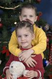 Adorable kids with the Holiday Spirit. In front of a Christmas tree, boy stands behind his sister hugging her neck, the sister is holding a teddy bear Royalty Free Stock Photography
