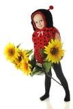 Adorable Ladybug Royalty Free Stock Photo