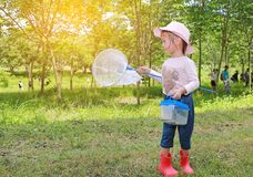 Adorable little asian girl wear straw hat in a field with insect net in summer. Outdoor activity.  royalty free stock image