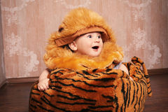Adorable little baby boy wearing tiger cub suit Royalty Free Stock Image