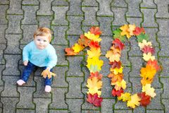 Adorable little baby girl in autumn park on sunny warm october day with oak and maple leaf. Fall foliage. Family outdoor stock photos