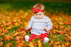 Adorable little baby girl in autumn park on sunny warm october day with oak and maple leaf. Fall foliage. Family outdoor. Fun in fall. child smiling stock image